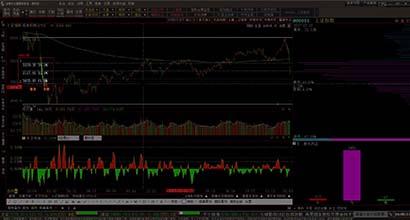 股市中的危与机