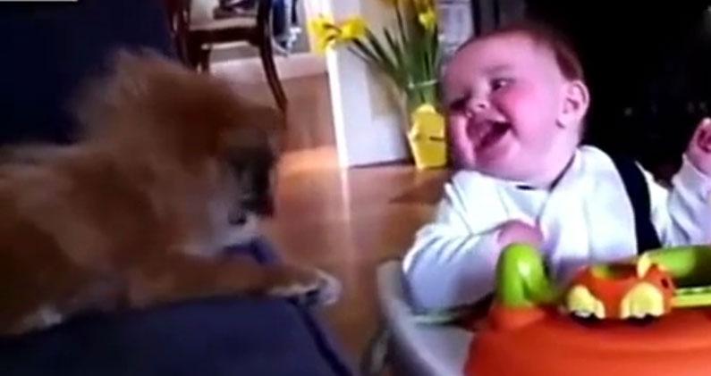 超萌孩童搞笑组合,(搞笑相册<小屁孩的第一次>)逗你开心笑个够