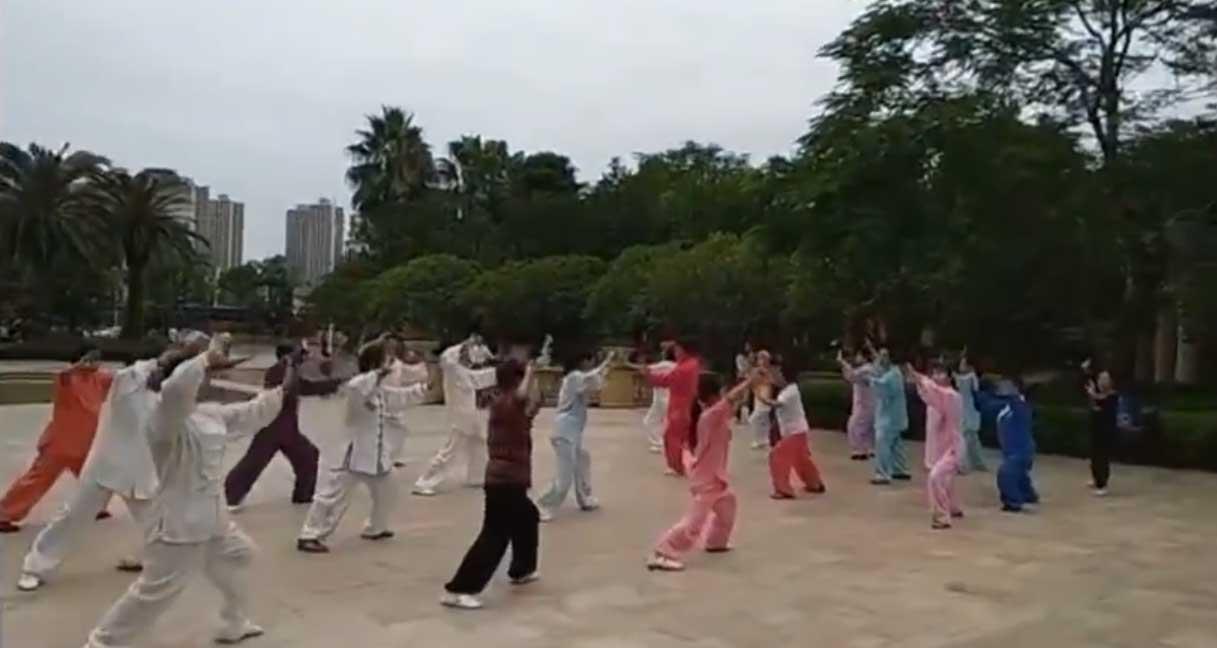 拳友晨练(烟花三月下扬州)
