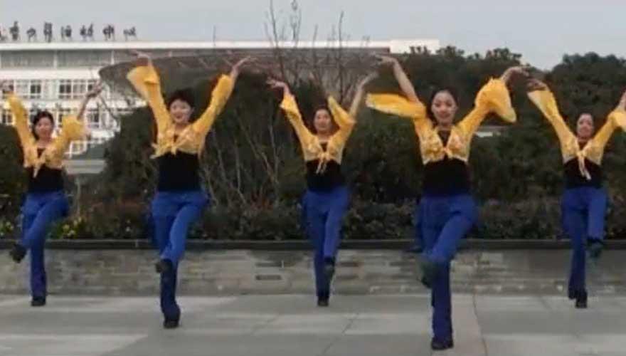 (广场舞)张雷-那一段情-Dj版