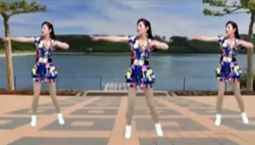 (广场舞)  王馨-双双飞