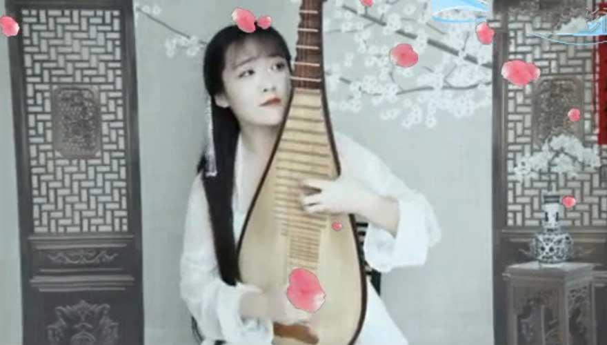 琴艺大师爱音乐