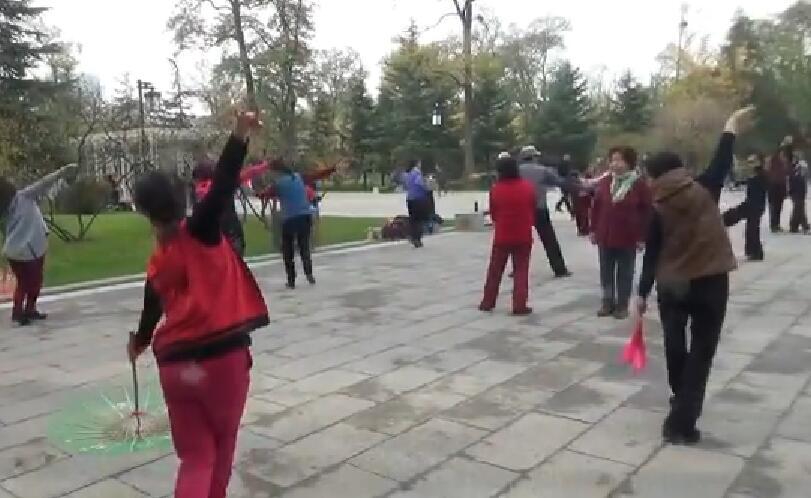 老有所学舞蹈《梅花泪》