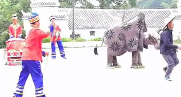 民俗表演《舞春牛》
