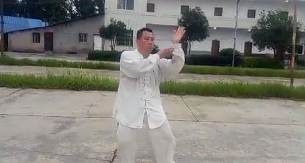 陈氏太极新架二路